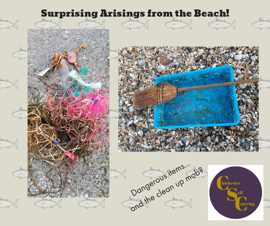 Surprising Arisings from the Beach!